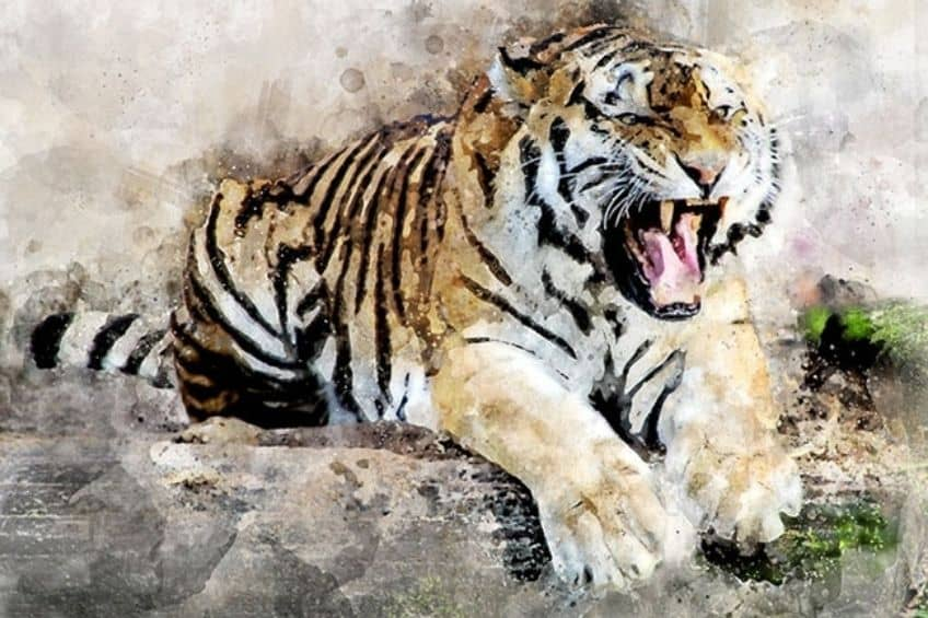 easy things to paint tiger