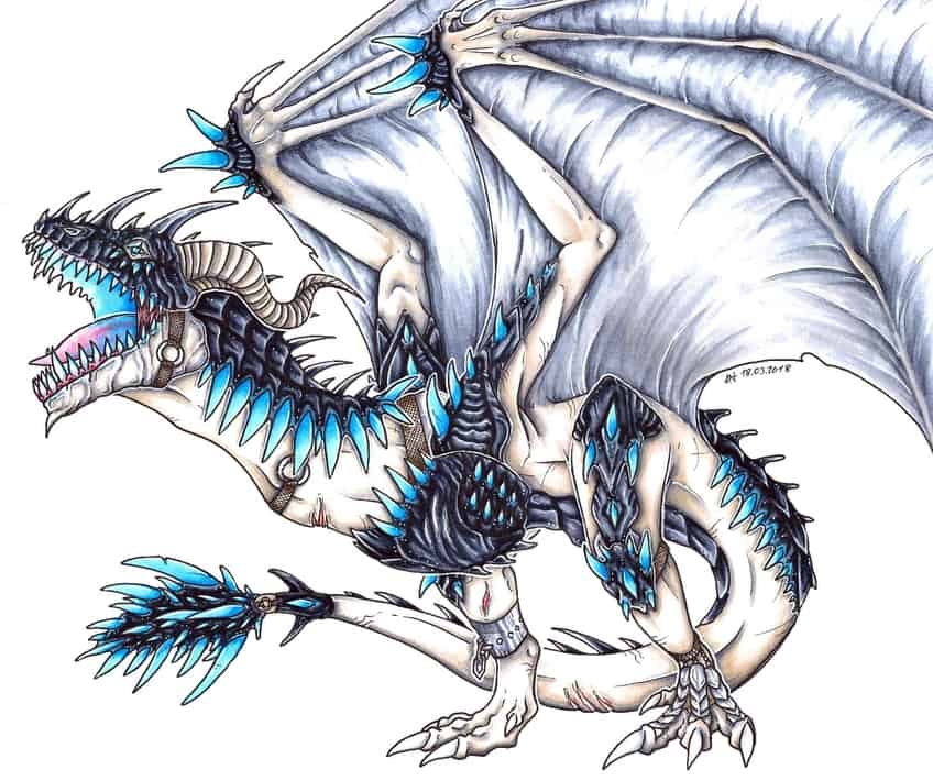 drawing dragons guide