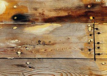 wood epoxy putty