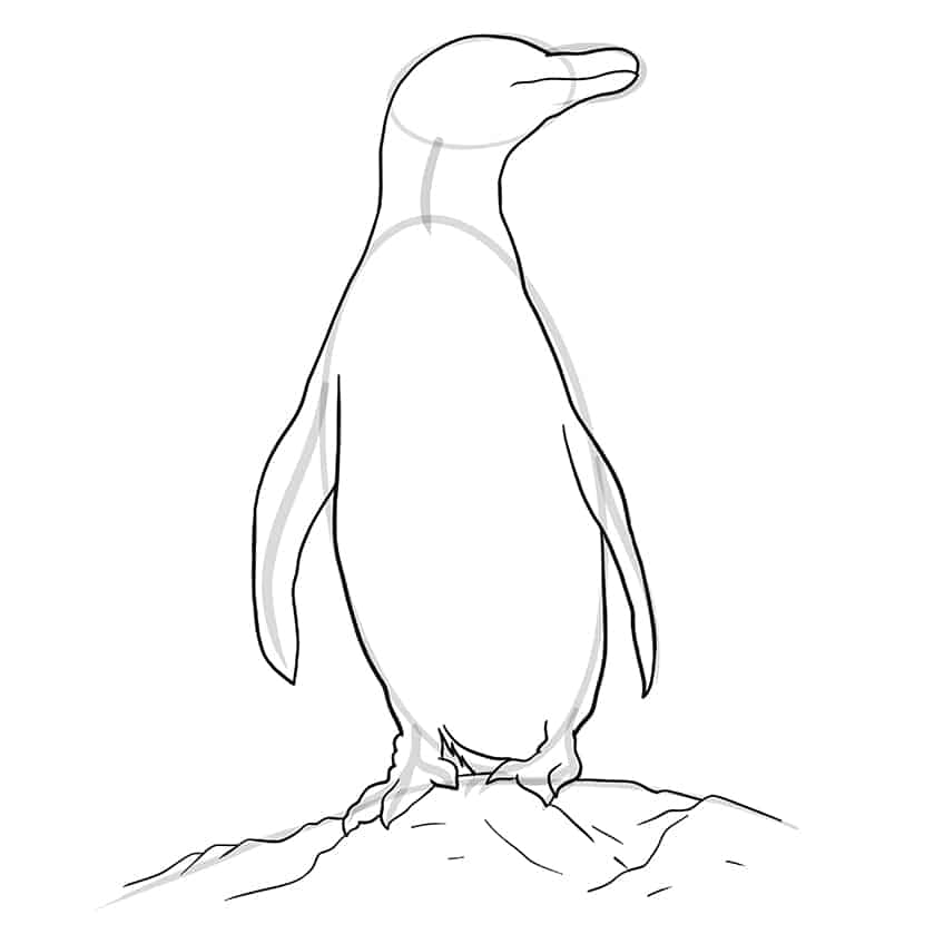 Penguin Drawing Step 8