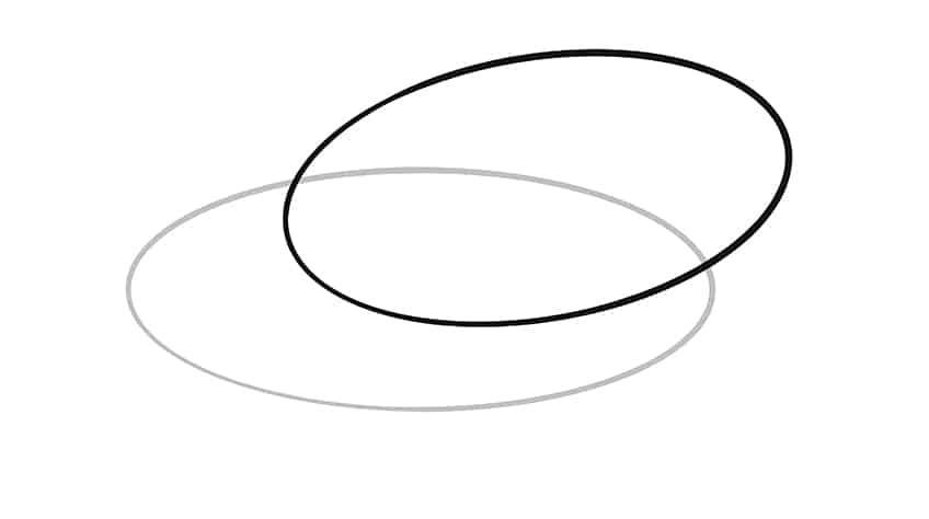 Swan Drawing Step 2