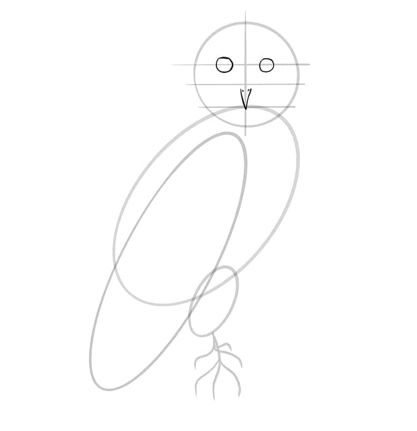 owl drawing step7