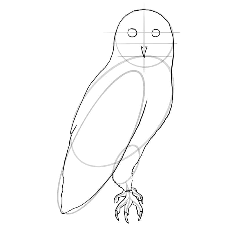 owl drawing step8