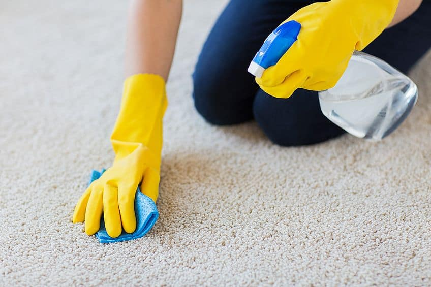 How to Get Wood Glue Out of Carpet