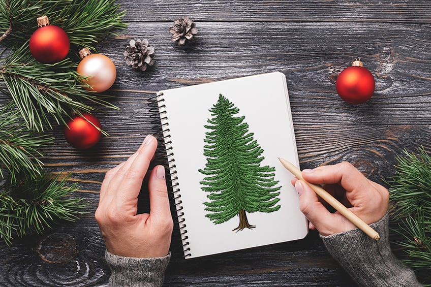 How to Draw a Conifer Tree