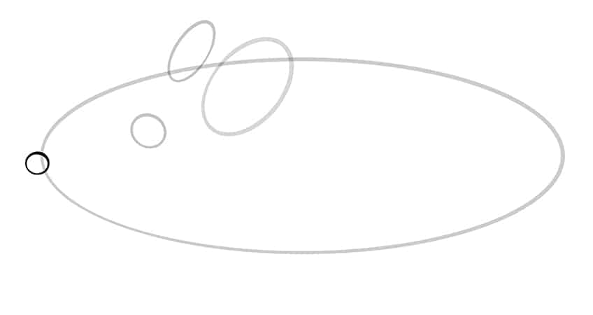 mouse drawing step4