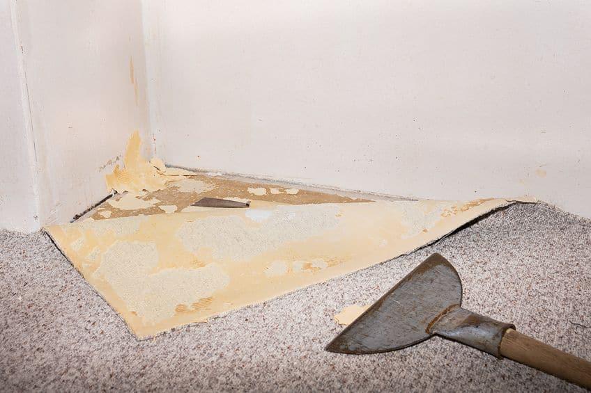Carpet Glue Remover