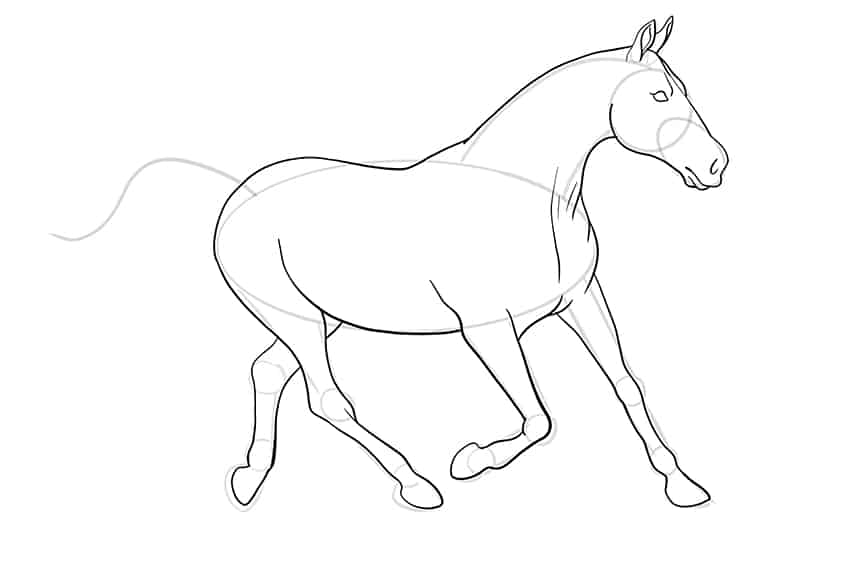 Easy Horse Drawing Step 11