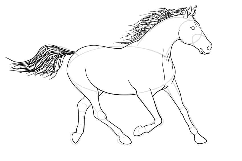 Easy Horse Drawing Step 12a