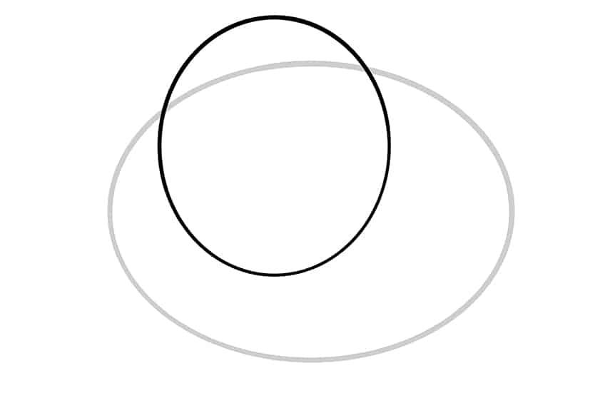 Guinea Pig Sketch Step 02