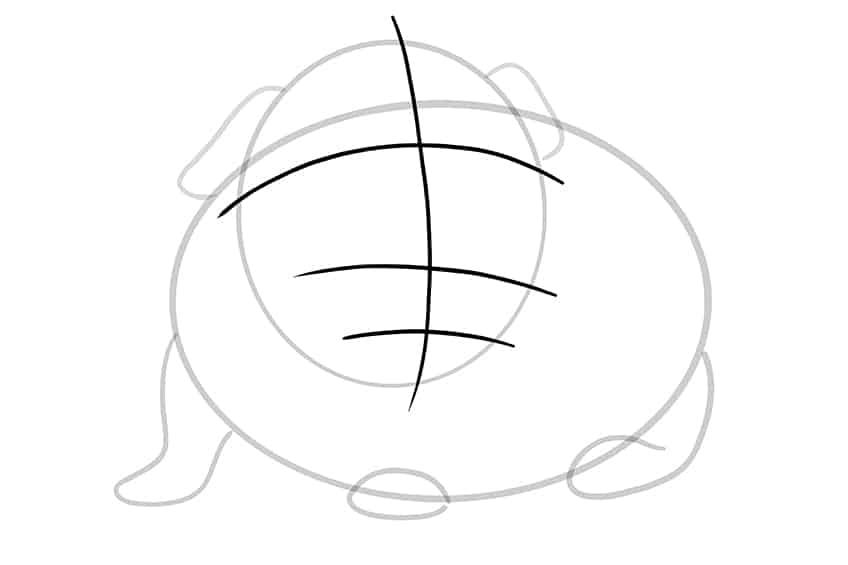 Guinea Pig Sketch Step 05