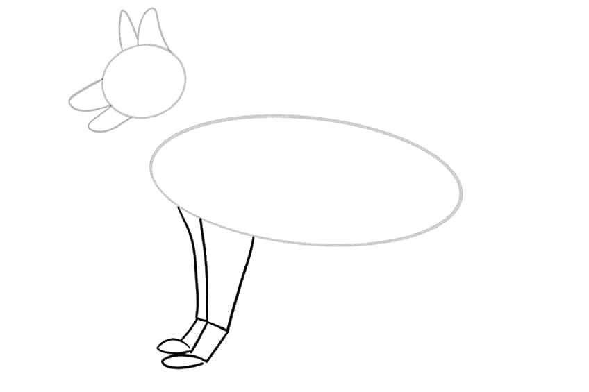 Step 05 of German Shepherd Drawing