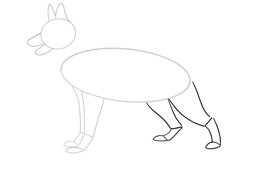 Step 06 of German Shepherd Drawing